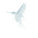 Bella Art Logo